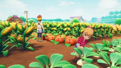 Photo of Story of Seasons Mobile Beautiful First Trailer