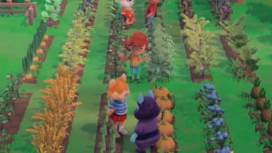 Photo of Hokko Life – Cutesy Life Sim Now Has Farming